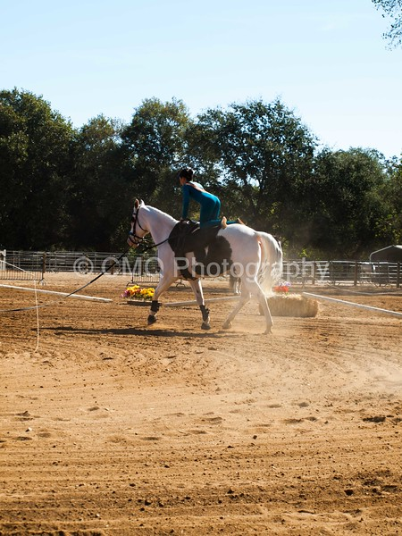 2016_Vaulting_Camelot_(1509_of_3844)