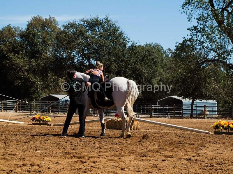 2016_Vaulting_Camelot_(2588_of_3844)