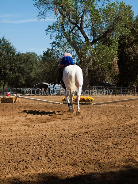 2016_Vaulting_Camelot_(2749_of_3844)