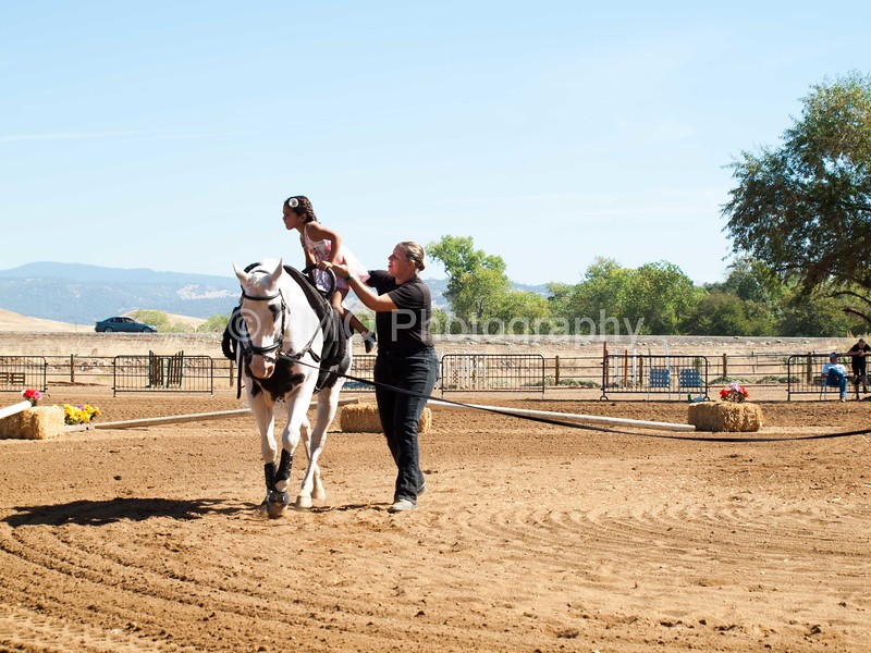 2016_Vaulting_Camelot_(1647_of_3844)
