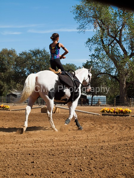 2016_Vaulting_Camelot_(2727_of_3844)