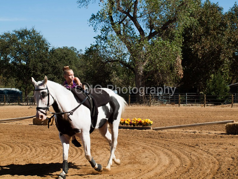 2016_Vaulting_Camelot_(3050_of_3844)