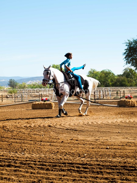 2016_Vaulting_Camelot_(1482_of_3844)