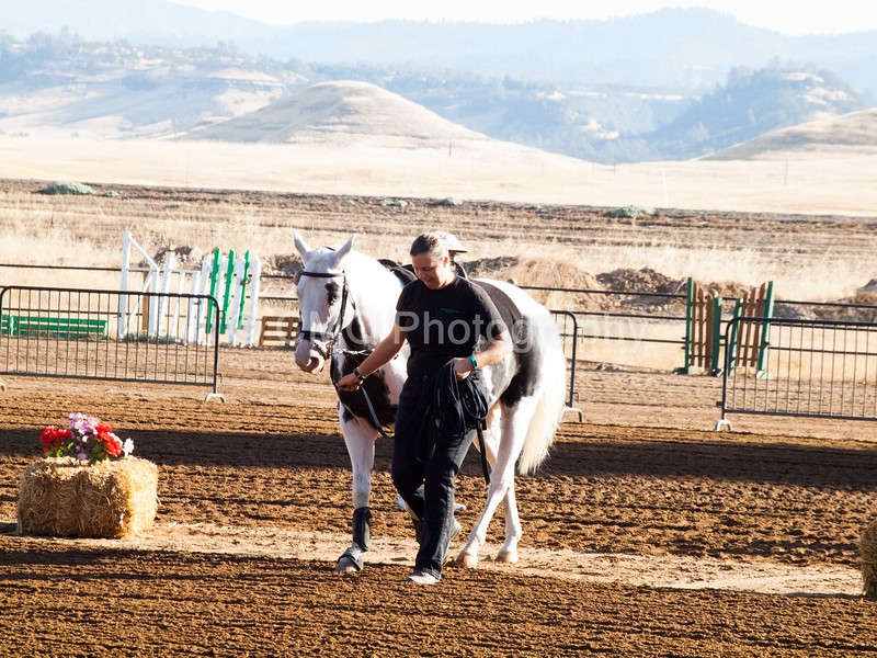 2016_Vaulting_Camelot_(16_of_3844)