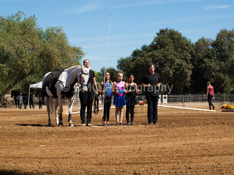 2016_Vaulting_Camelot_(2708_of_3844)