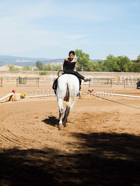 2016_Vaulting_Camelot_(2984_of_3844)
