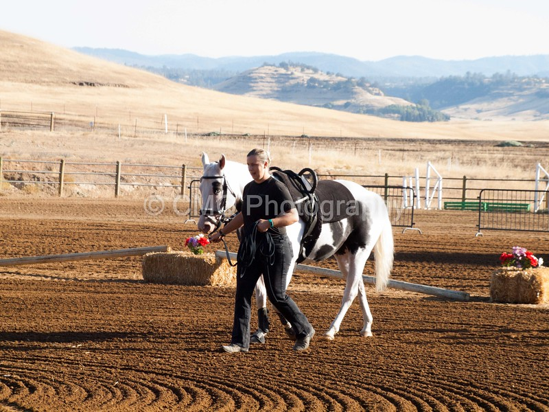 2016_Vaulting_Camelot_(17_of_3844)