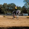 2016_Vaulting_Camelot_(3142_of_3844)