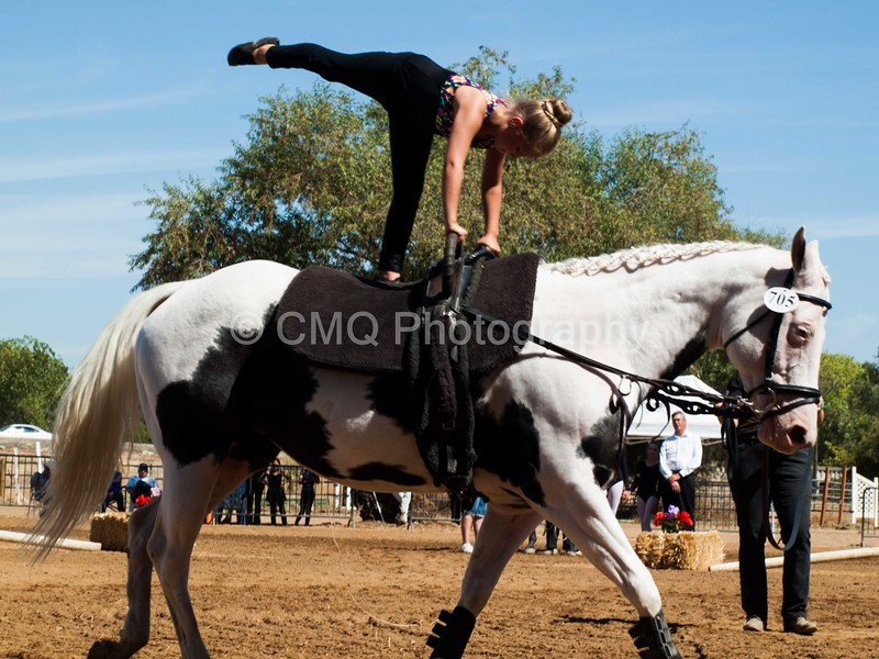 2016_Vaulting_Camelot_(2599_of_3844)