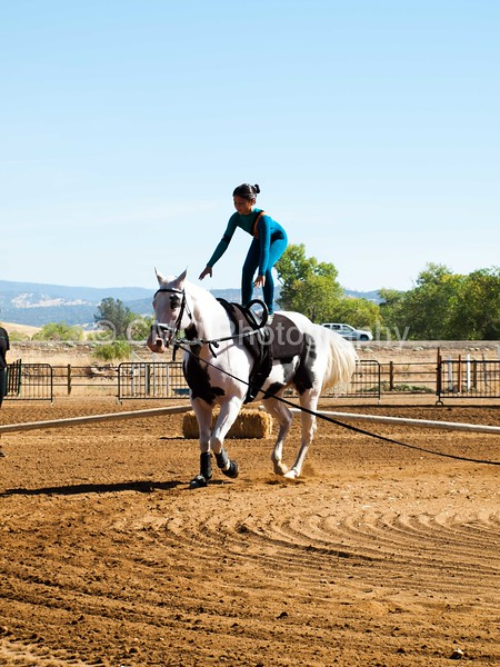 2016_Vaulting_Camelot_(1514_of_3844)