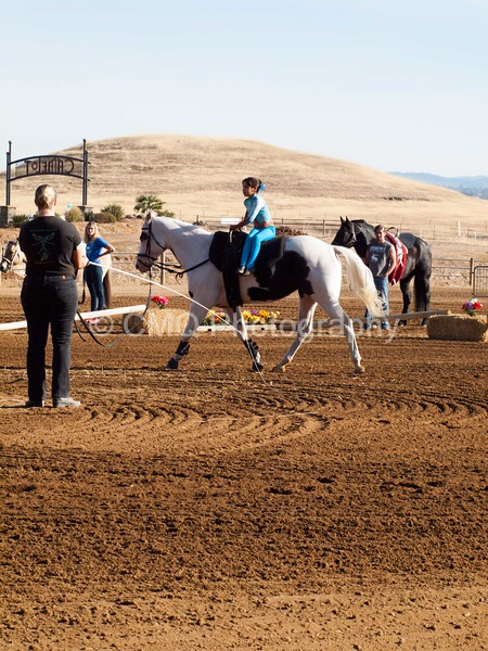 2016_Vaulting_Camelot_(76_of_3844)