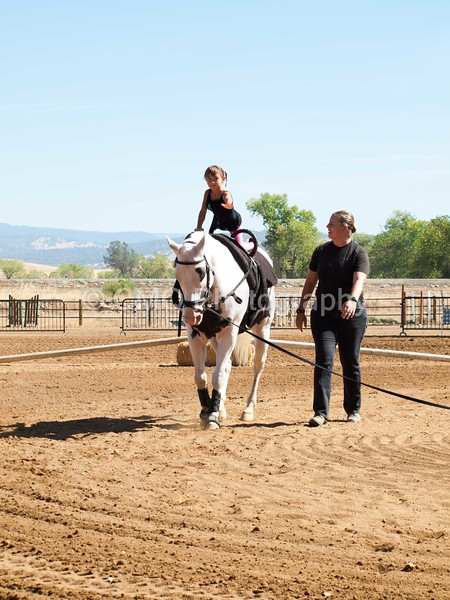 2016_Vaulting_Camelot_(1703_of_3844)