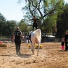 2016_Vaulting_Camelot_(1685_of_3844)