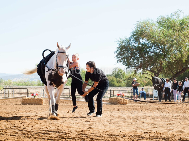 2016_Vaulting_Camelot_(1293_of_3844)