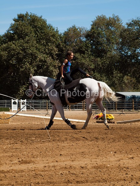 2016_Vaulting_Camelot_(2722_of_3844)