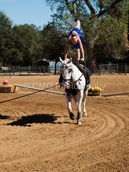 2016_Vaulting_Camelot_(3055_of_3844)