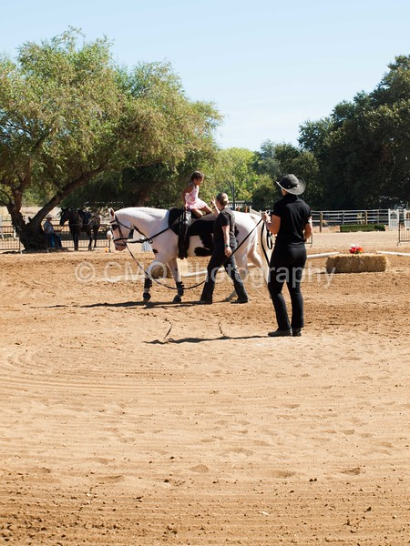 2016_Vaulting_Camelot_(1869_of_3844)