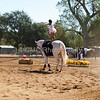 2016_Vaulting_Camelot_(1656_of_3844)