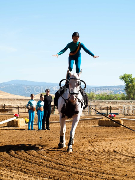 2016_Vaulting_Camelot_(1518_of_3844)