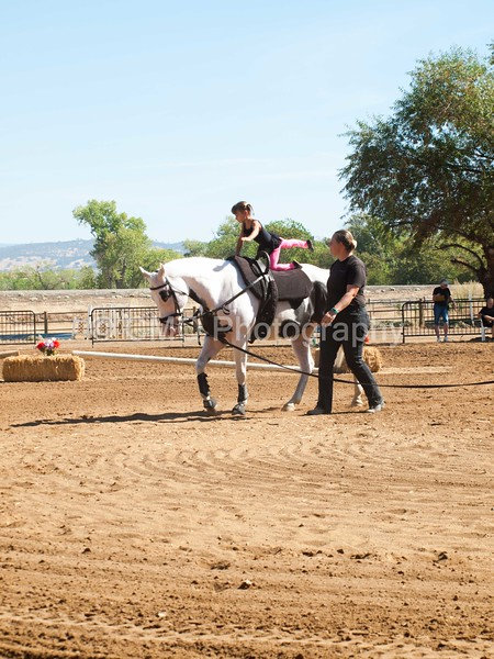 2016_Vaulting_Camelot_(1698_of_3844)