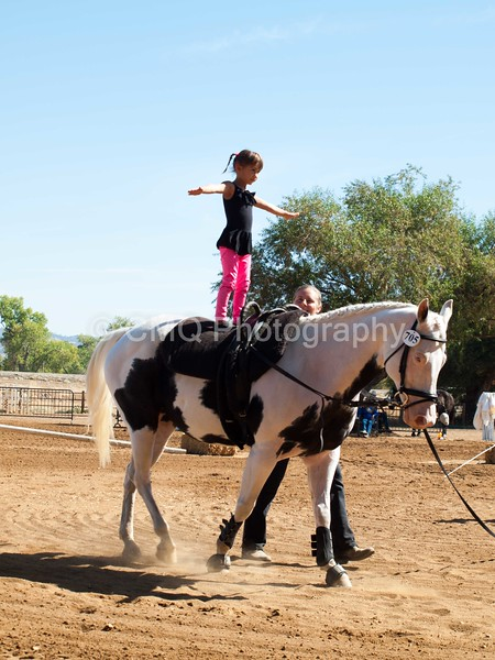 2016_Vaulting_Camelot_(1707_of_3844)