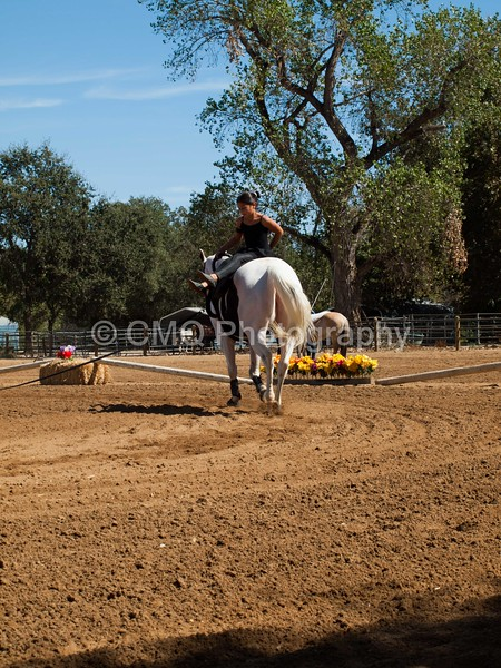 2016_Vaulting_Camelot_(2771_of_3844)