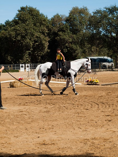 2016_Vaulting_Camelot_(3026_of_3844)