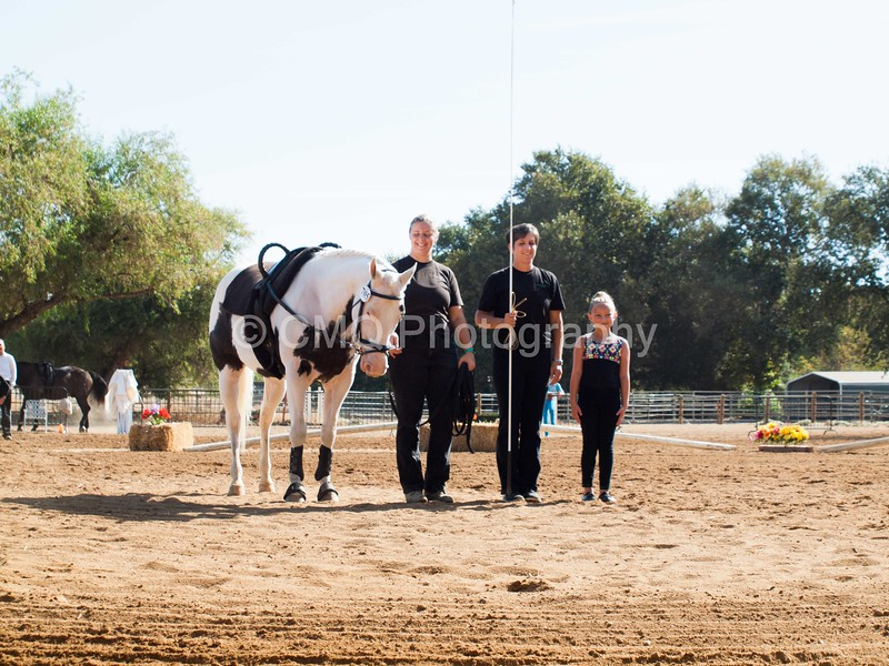 2016_Vaulting_Camelot_(1312_of_3844)