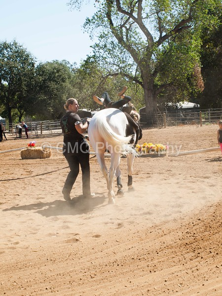 2016_Vaulting_Camelot_(1885_of_3844)
