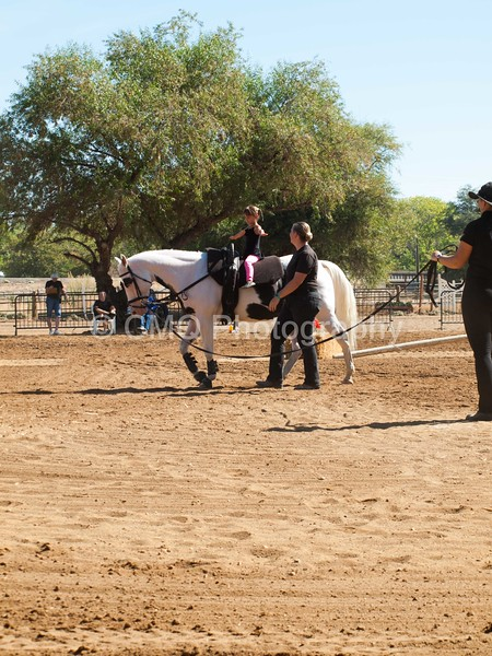2016_Vaulting_Camelot_(1695_of_3844)