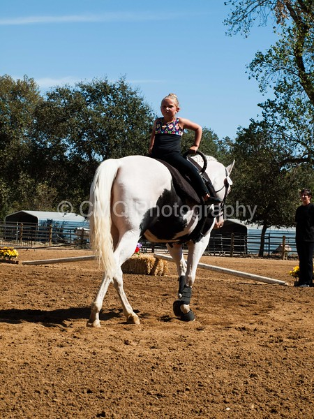 2016_Vaulting_Camelot_(2614_of_3844)
