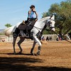 2016_Vaulting_Camelot_(2726_of_3844)