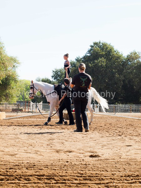 2016_Vaulting_Camelot_(1301_of_3844)