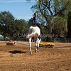 2016_Vaulting_Camelot_(2721_of_3844)
