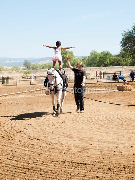 2016_Vaulting_Camelot_(1871_of_3844)