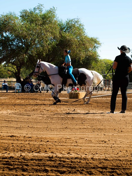 2016_Vaulting_Camelot_(1470_of_3844)