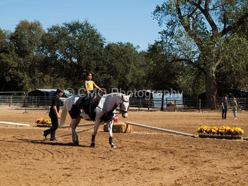 2016_Vaulting_Camelot_(3017_of_3844)