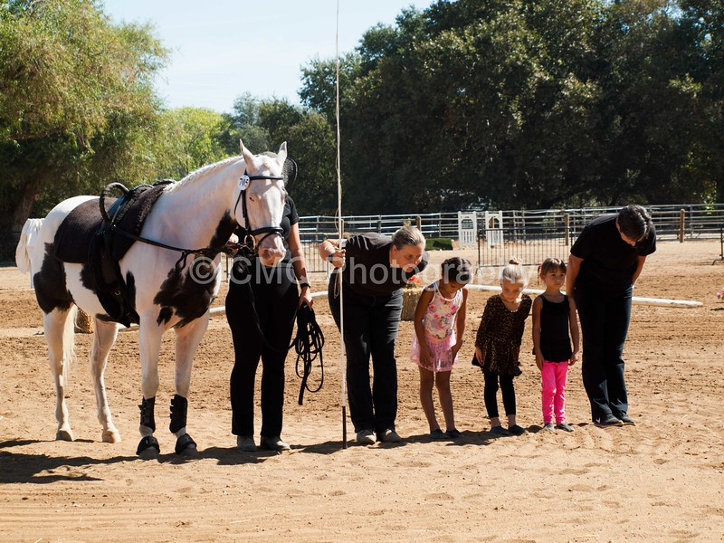 2016_Vaulting_Camelot_(1844_of_3844)
