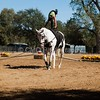 2016_Vaulting_Camelot_(3144_of_3844)