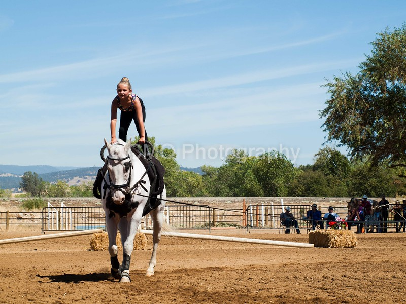 2016_Vaulting_Camelot_(2594_of_3844)