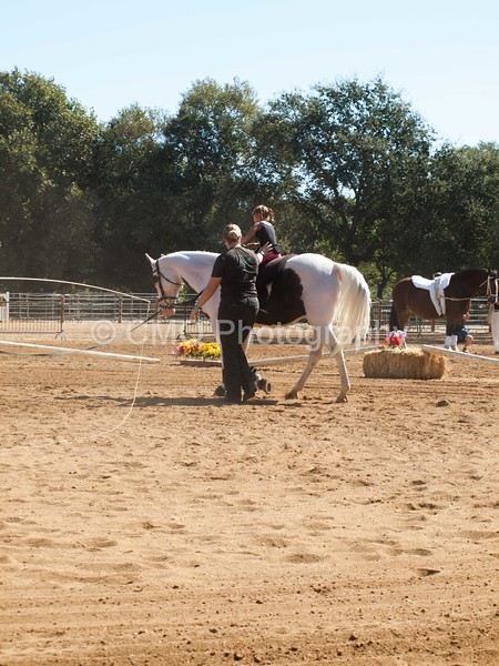 2016_Vaulting_Camelot_(1693_of_3844)