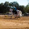2016_Vaulting_Camelot_(1491_of_3844)