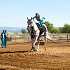 2016_Vaulting_Camelot_(1475_of_3844)
