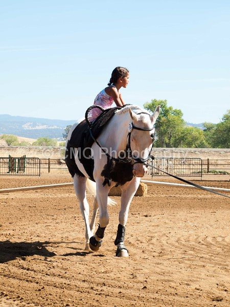 2016_Vaulting_Camelot_(1663_of_3844)