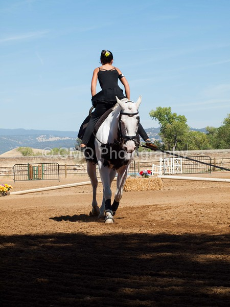 2016_Vaulting_Camelot_(2768_of_3844)