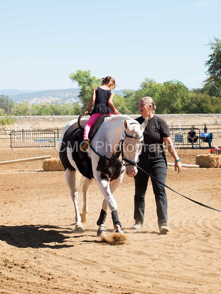 2016_Vaulting_Camelot_(1923_of_3844)