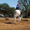 2016_Vaulting_Camelot_(2759_of_3844)