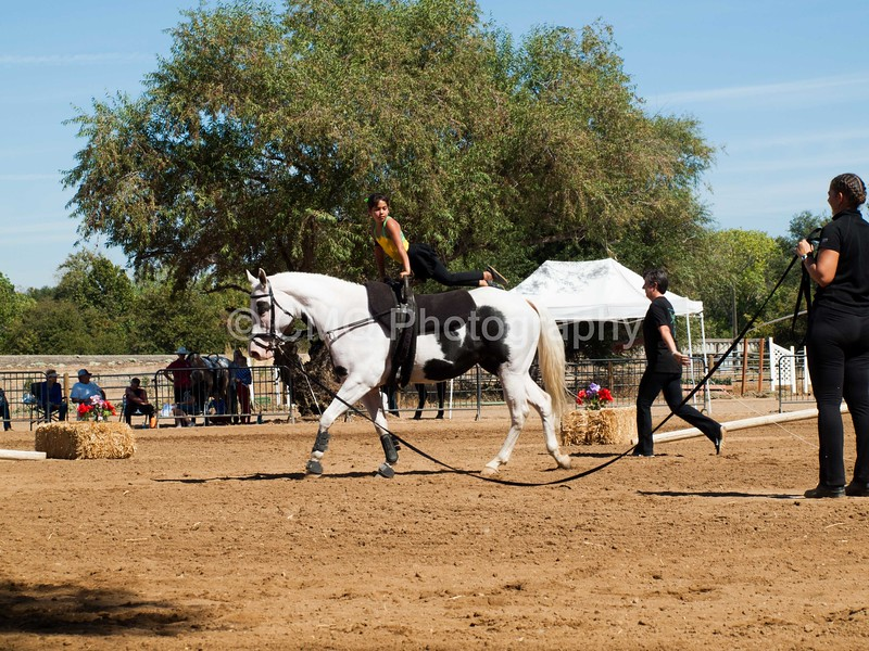 2016_Vaulting_Camelot_(2859_of_3844)