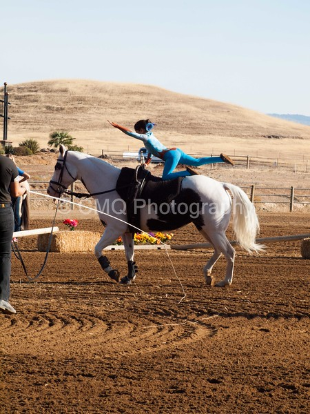 2016_Vaulting_Camelot_(71_of_3844)