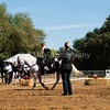 2016_Vaulting_Camelot_(2590_of_3844)